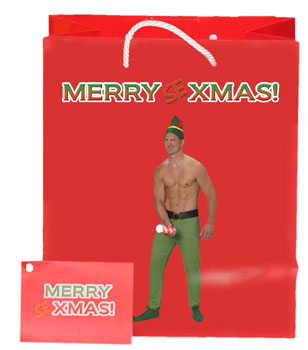 Merry Sexmas Male Elf Gift bag